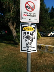 Warning: Bear sightings!